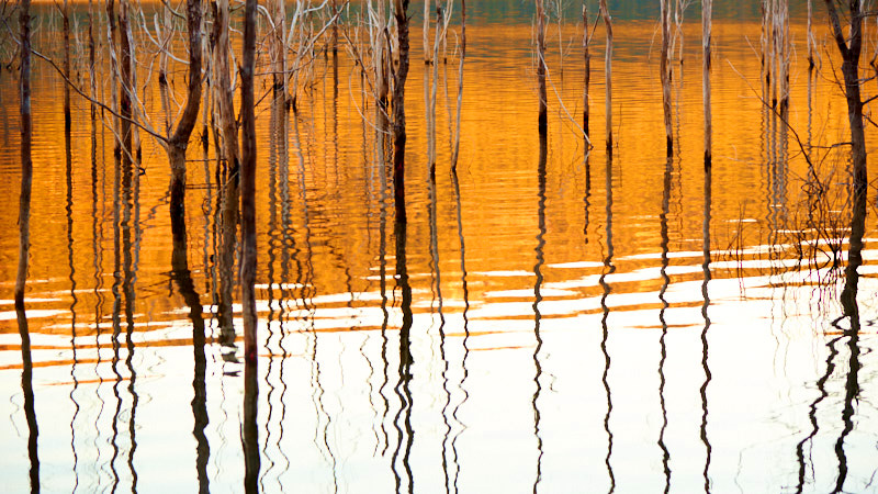 Sample late afternoon image of reflections on water prepared for Excitations Sunraysia Begginers Photography workshops.