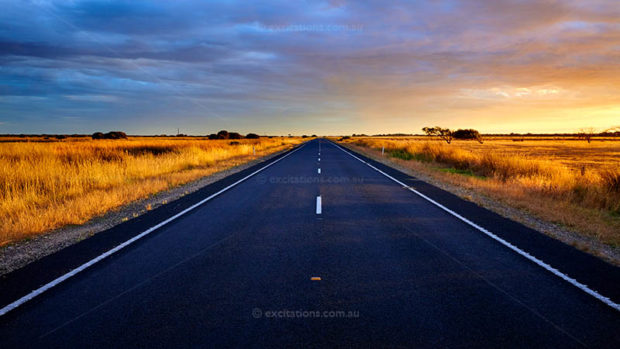 Late light on dry golden grass beside a highway in South Australia. Photo for Excitations Photo Adventures