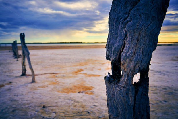 digitally altered landscape of rotting post is The Coorong, South Australia, Excitations Photo Adventures.